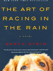 Download The Art of Racing in the Rain (2019) Mp4